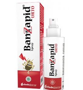 BANZAPID SPR TRATTAMENTO 100ML